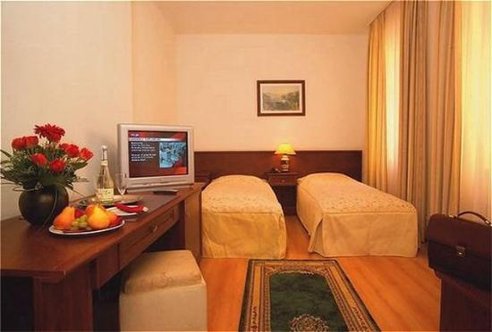 Goethe Hotel: Guest room