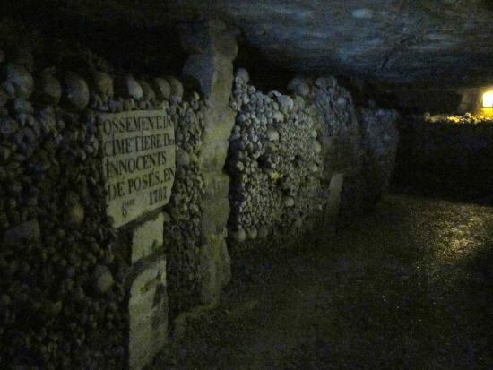 Aeon Tours: Catacombes des Paris