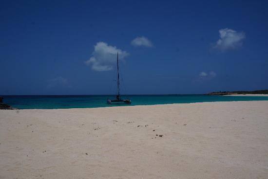 Simpson Bay, St. Maarten-St. Martin: Dog Island. Beautiful Beach, Awesome Wild Life, and and extremely fun ride out!!!!