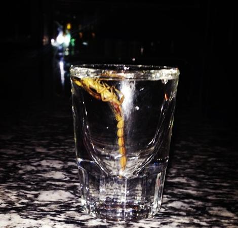 La codificación alcohólica en arhangelske
