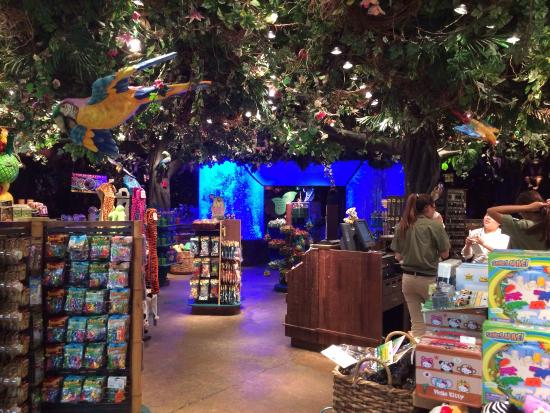 Menlo Park Mall Restaurants Rainforest Cafe