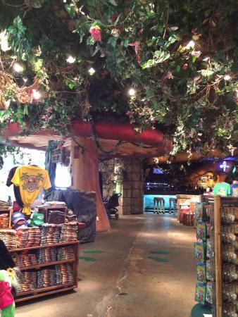 Menlo Park Mall Restaurants Rainforest Cafe