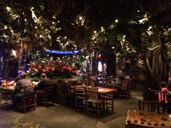 Restaurants Like Rainforest Cafe In Nj