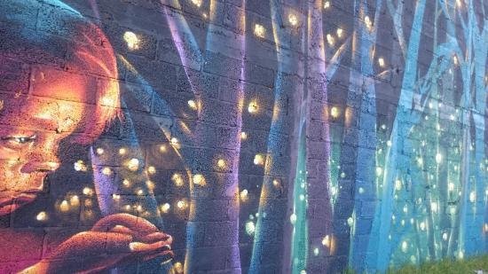 Foto de santuario de las luciernagas tlaxcala Espectaculo de luciernagas en tlaxcala