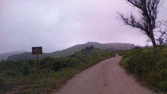 Reserva Nacional Lomas de Lachay