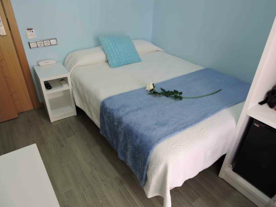 Madrid City Rooms : Chica pero linda!