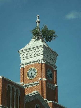 Downtown Greensburg Indiana Picture Of Courthouse Tree