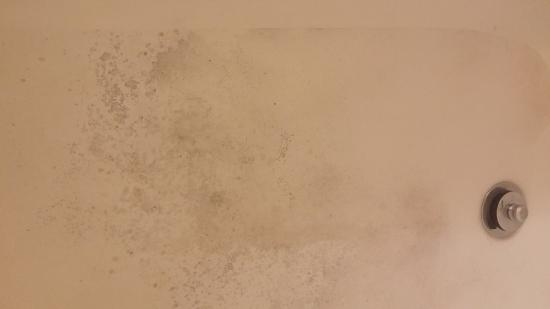 Fairfield Inn & Suites Dallas DFW Airport North/Irving: Mold in bottom of tub