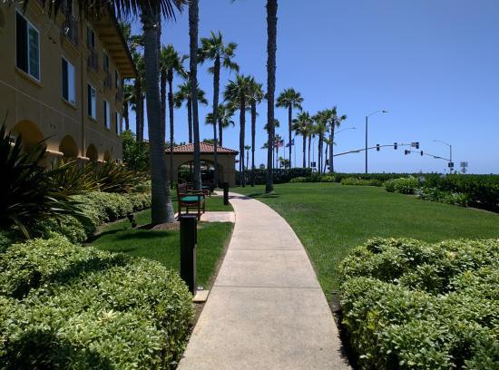 In Front Of The Hotel Picture Of Hilton Garden Inn Carlsbad Beach Carlsbad Tripadvisor