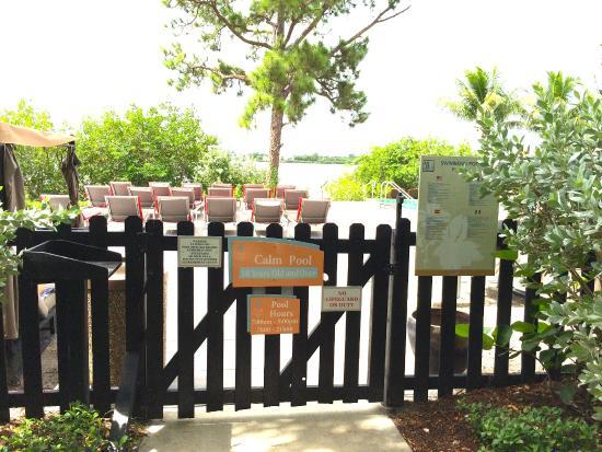 Порт-Сент-Люси, Флорида: Calm Pool