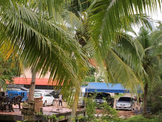 "Green View Village Resort: Las ""ligeras"" obras"