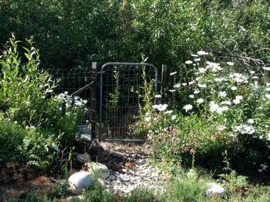 "Aspen Leaf Lodge: I called this ""the gate to nowhere"". It was at the back of the property. You can hear the creek"