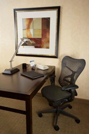 Hilton Garden Inn New Braunfels Hotel: Spacious Work Desk