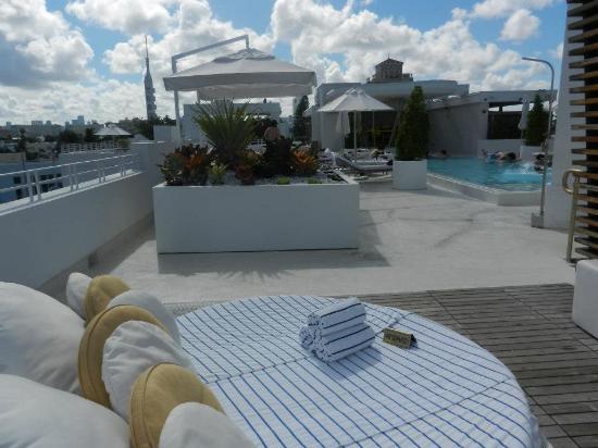 Dream South Beach: Pool