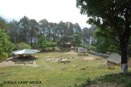 Jungle Camp Dhura