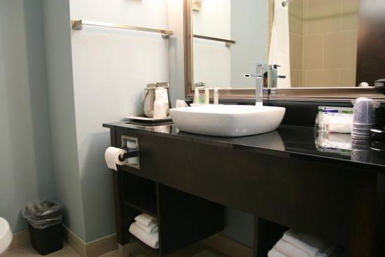 Holiday Inn Express & Suites Corpus Christi North: Guest Bath