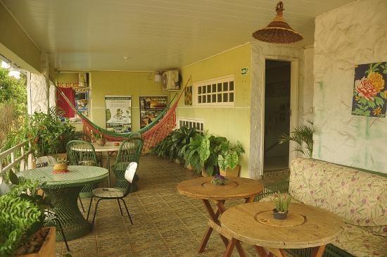 Green House Hostel: terrace