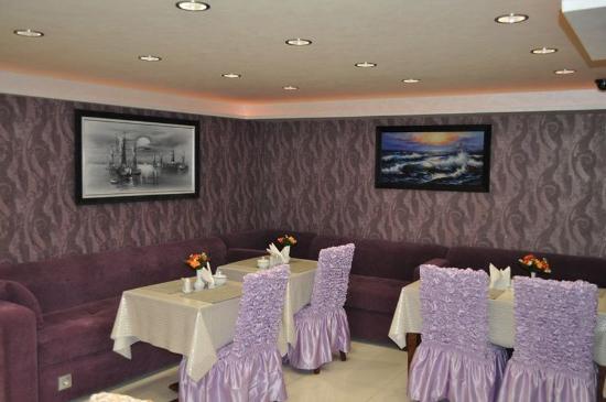 Hotel Sureyya : Other