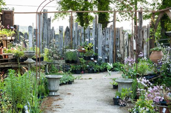 King John S Nursery Garden