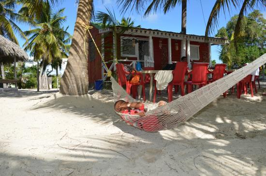 Casa rural el paraiso de saona prices guest house reviews isla saona dominican republic - Casa rural el paraiso ...