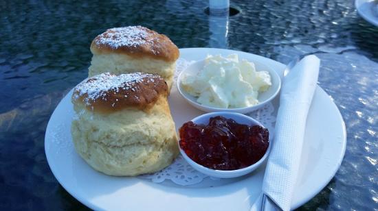 Richmond Maze and Tearooms: Scones for Devonshire Tea