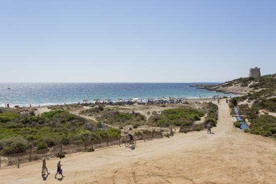 Ibiza Karte Playa D En Bossa.Foto De Grand Palladium Palace Ibiza Resort Spa Playa D En Bossa