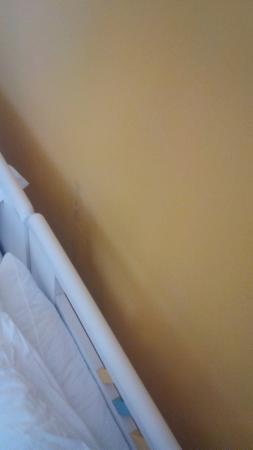 CalanovellaMare: muffa nella parete dietro il letto