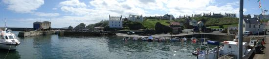 St Abbs: Panorama