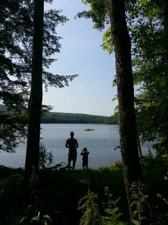 Mongaup Pond Campground: View from site