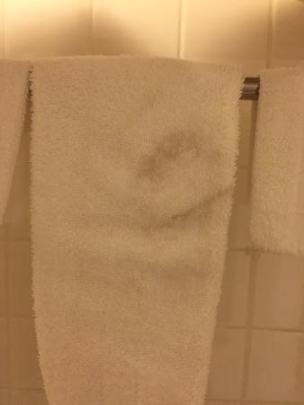 """Creekside Lands Inn: Unused """"clean"""" towel on check in"""