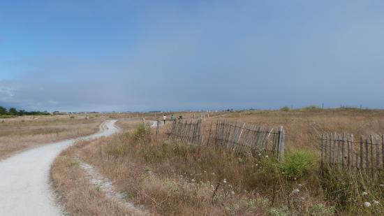 Yelloh Village La Plage: derrière le camping