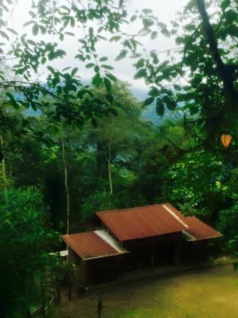 Santa Lucia Cloud Forest : where the guys had a football match with santa lucia staff