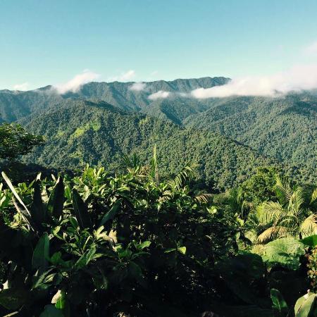 Santa Lucia Cloud Forest