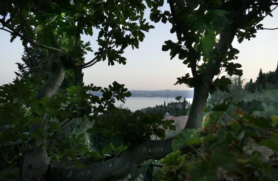 Trattoria Riolet: Blick auf den abendlichen Gardasee Richtung Salo