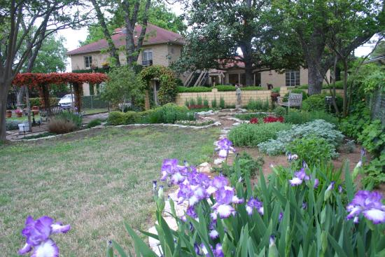 Das Garten Haus Bed and Breakfast: Bed and Breakfast Garden