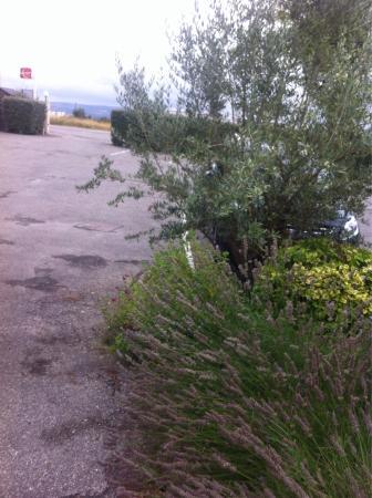 Clos Fleuri: Parking gratuit