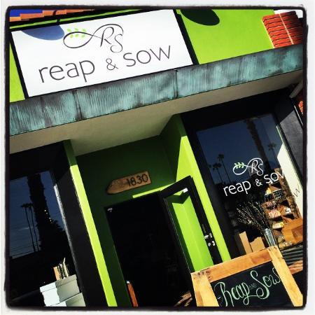Reap & Sow