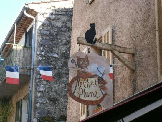 Le Chat Plume: Insegna