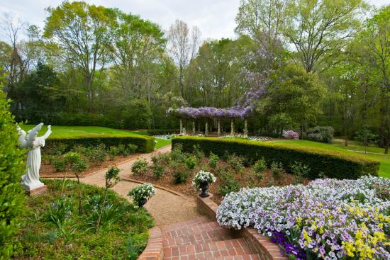 pergola in bloom picture of monmouth historic inn and gardens natchez tripadvisor