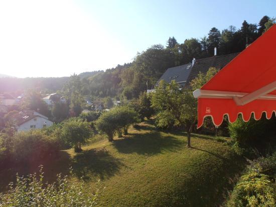 Hotel Neuenfels: Vue du balcon de la chambre