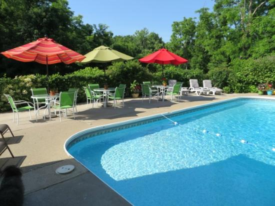 John Morris Manor Bed & Breakfast: Pool side