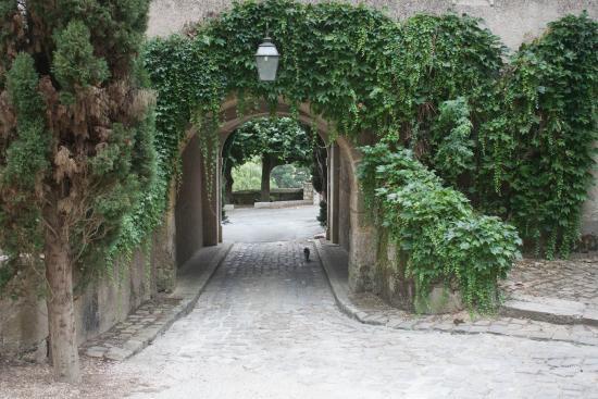 Chateau de Nazelles Amboise: L'entrée pas prévue pour un semi-remorque