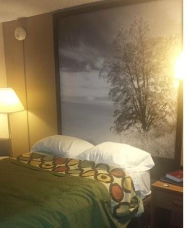 Super 8 Mitchell: Bed with photo above