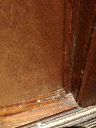 Innkeeper's Lodge Basingstoke: Some kind of growth in the bathroom door