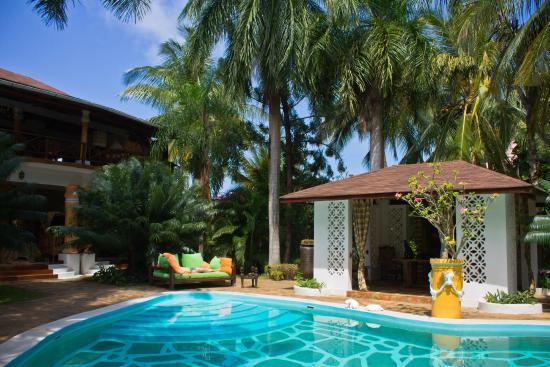 African House Resort: Оазис