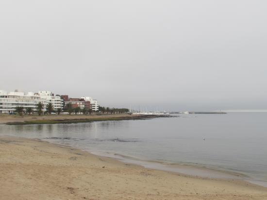 Oasis Parque Hotel: Imagem da praia a partir do Pier de madeira, a duas quadras do hotel Oasis