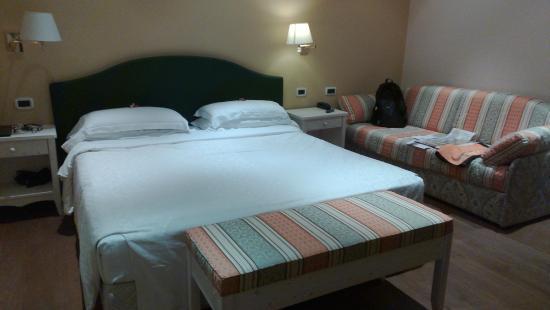 Hotel Dolomiti: camera