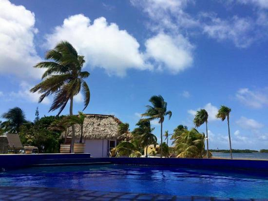 Turneffe-øyene, Belize: Blackbird Caye Resort,  July 2015