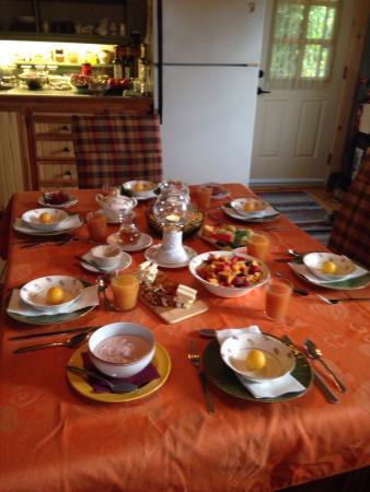 Gîte Le Ravenala : Petit déjeuner et jardin arrière