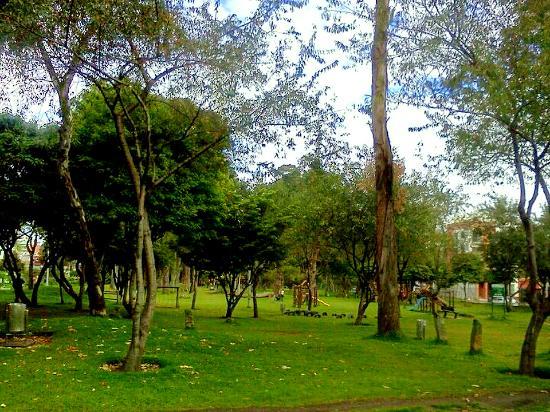 Parque Cedro Salazar